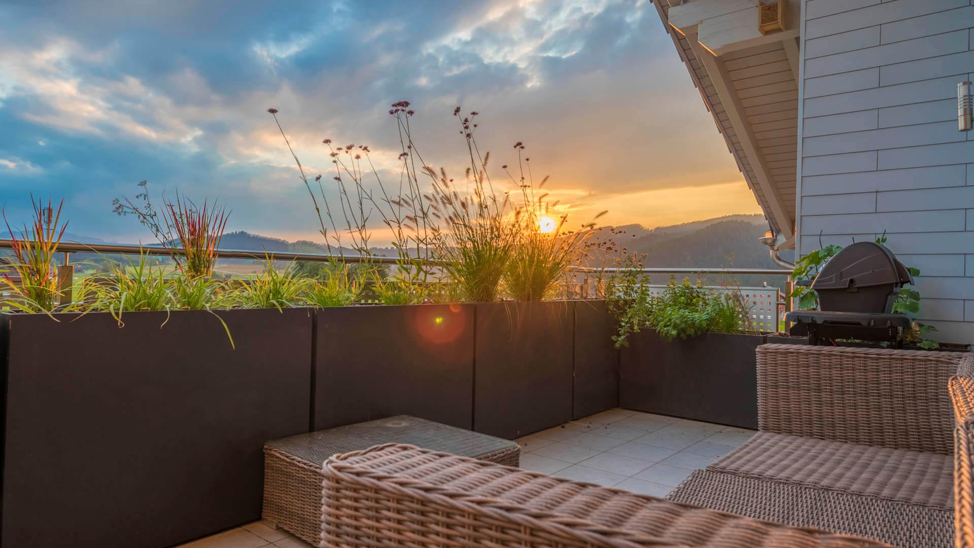 Mit Gräsern bepflanzte Töpfe auf einer Terrasse