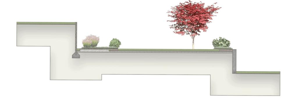 Rasenfläche mit Baum als Charakterelement